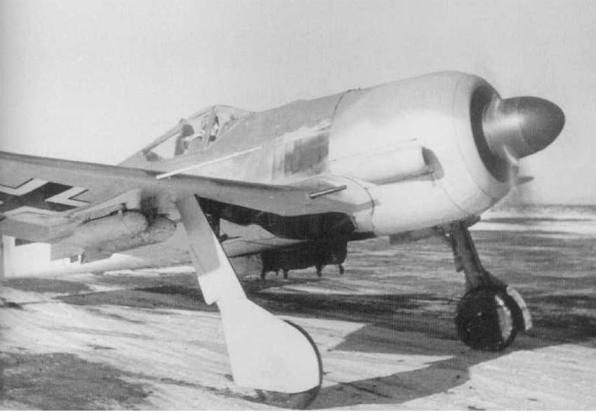 Image result for Fw190 F3