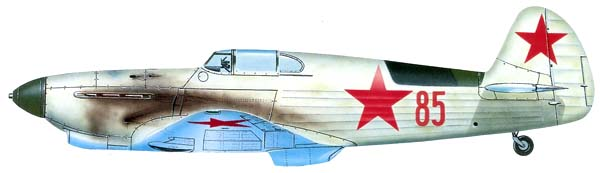 yak1-c6.jpg
