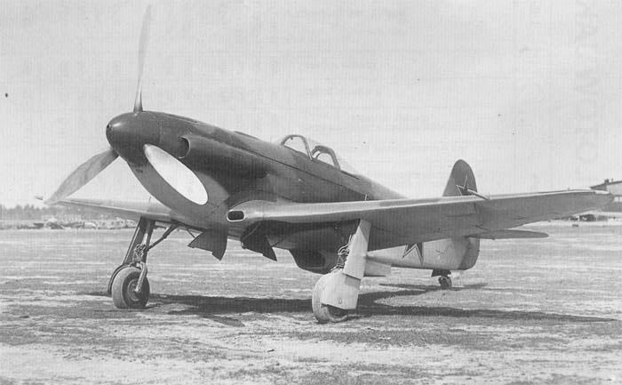 yak3-3.jpg